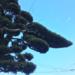 【伊豆観光】雨の日にオススメの伊豆の観光地ベスト3!